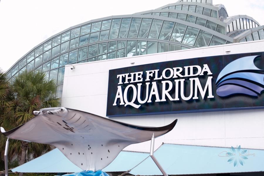 09_14_2014 Florida Aquarium 46.jpg