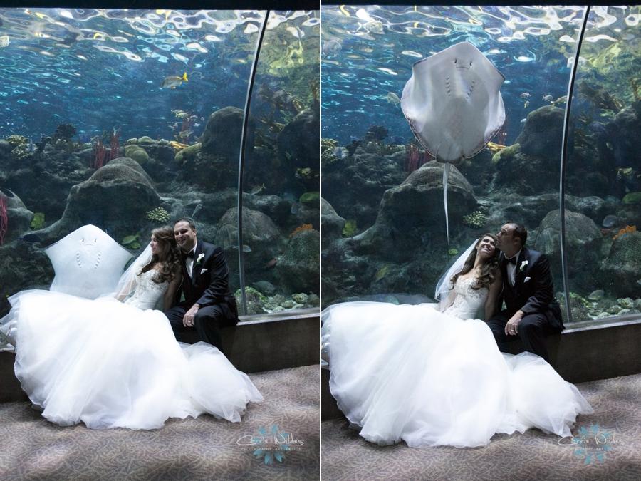10_18_14 Florida Aquarium_0011.jpg