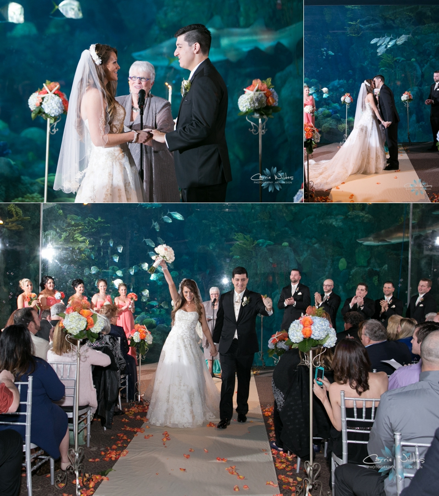 2_14_15 Florida Aquarium Wedding_0015.jpg