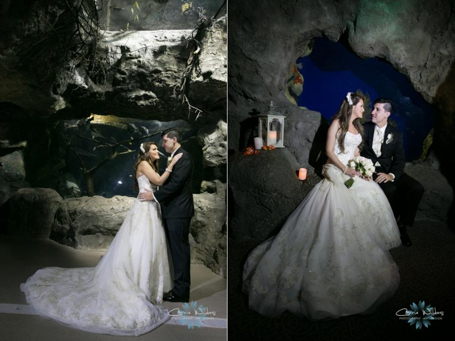 2_14_15 Florida Aquarium Wedding_0017.jpg