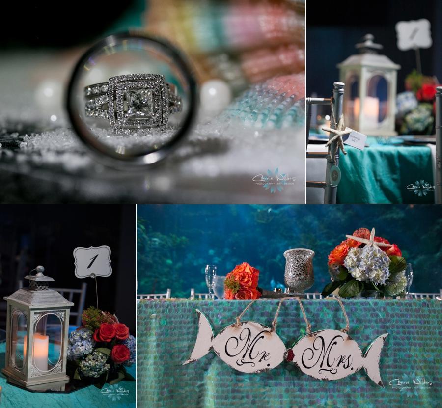 2_14_15 Florida Aquarium Wedding_0018.jpg
