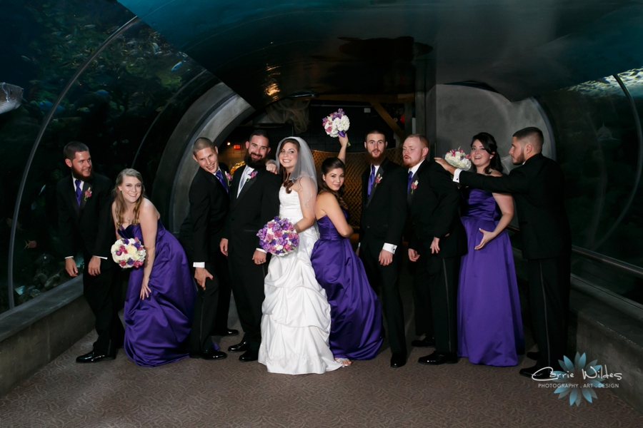 8_1_15 Florida Aquarium Wedding_0015.jpg