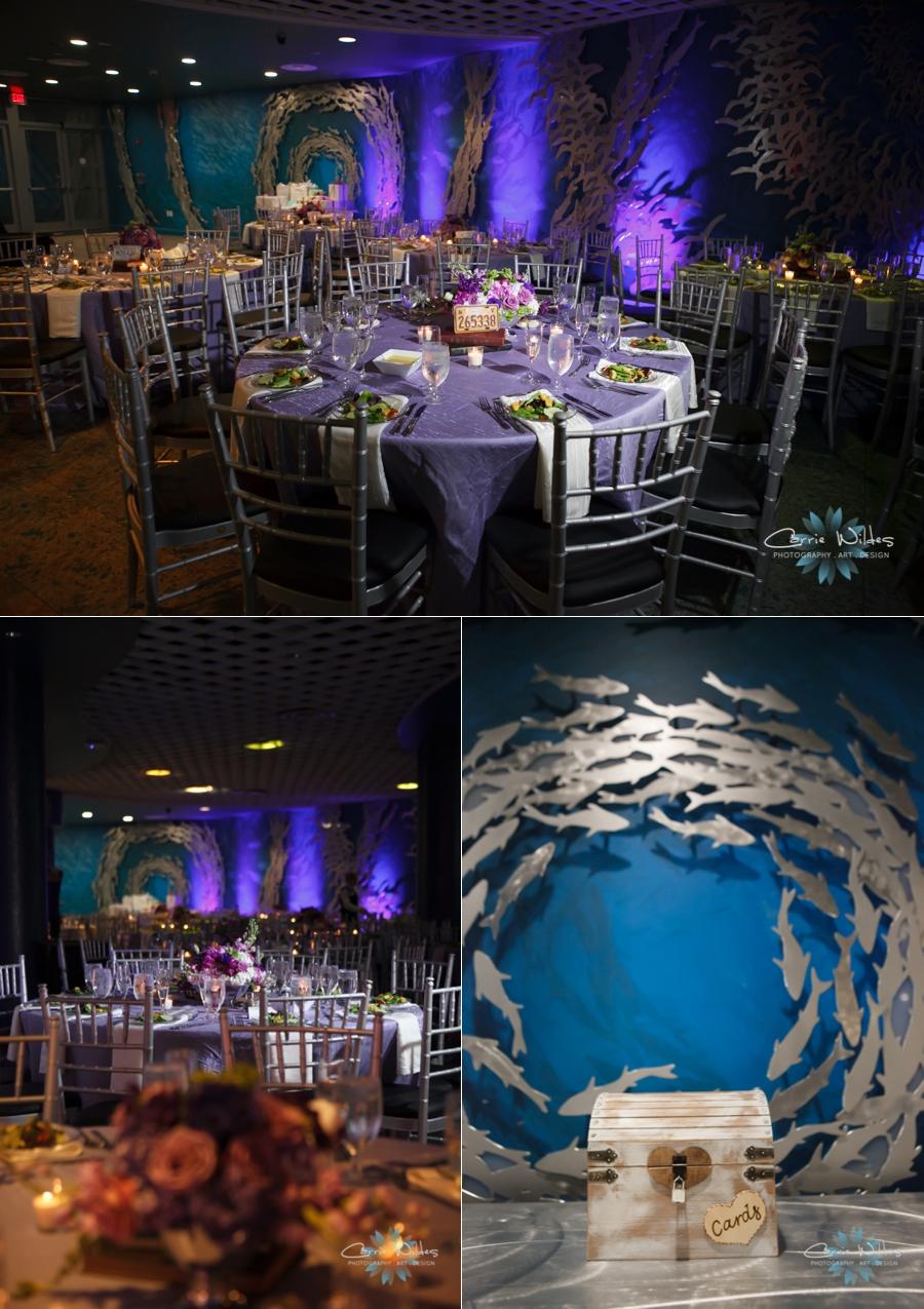 8_1_15 Florida Aquarium Wedding_0085.jpg