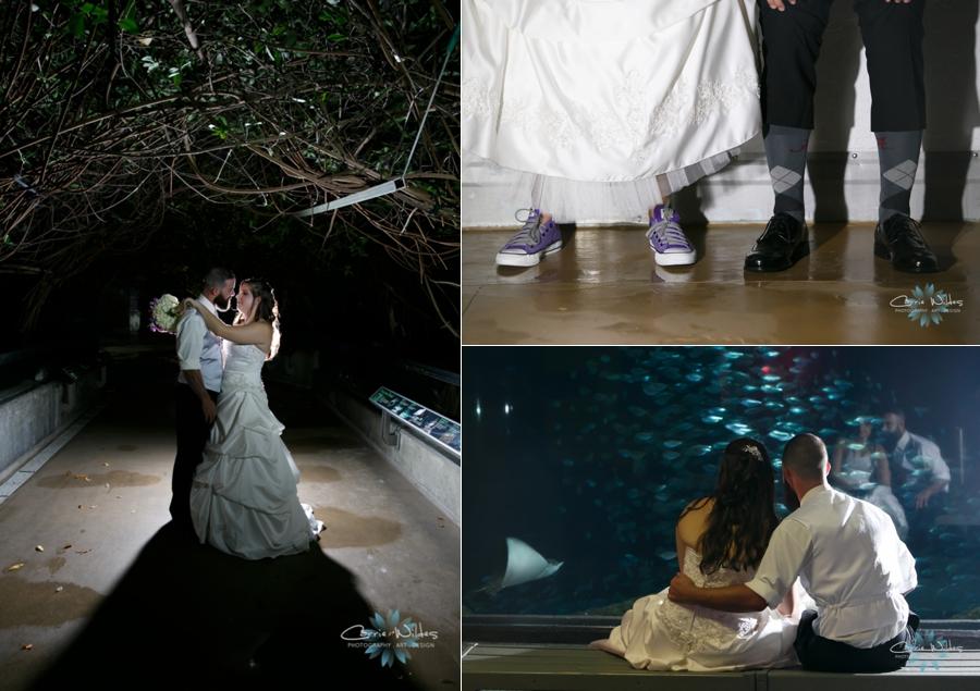 8_1_15 Florida Aquarium Wedding_0090.jpg