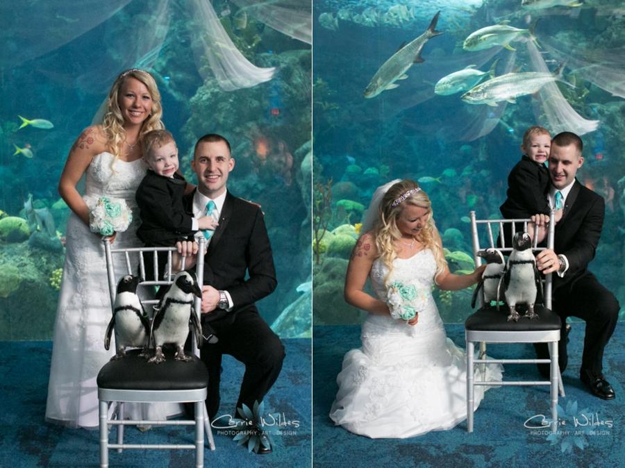 1_15_16 Florida Aquarium Wedding_0004.jpg
