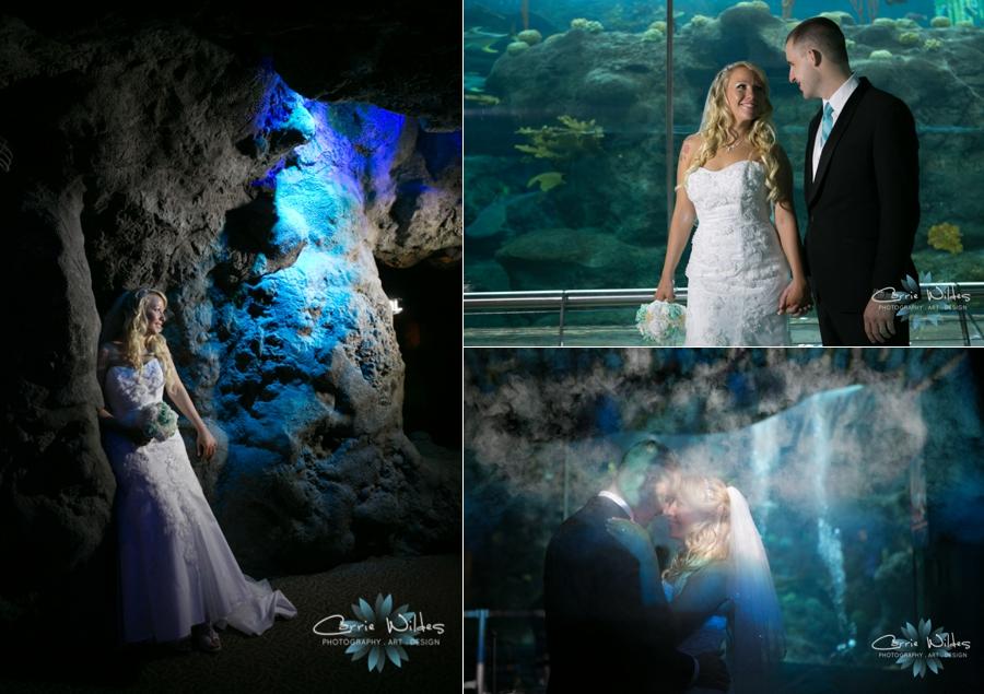 1_15_16 Florida Aquarium Wedding_0010.jpg