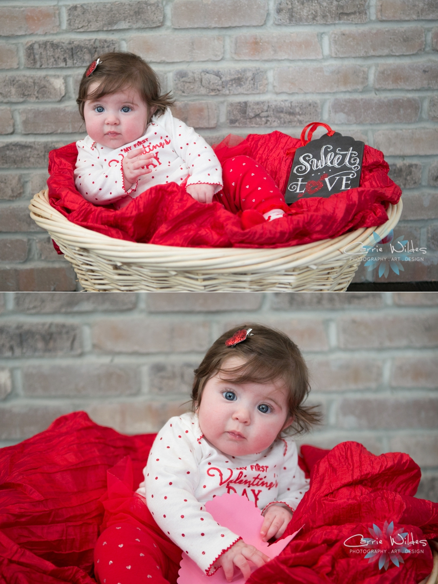 Tampa Valentines Day Baby Portraits_0001.jpg