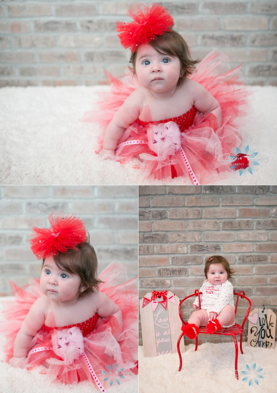 Tampa Valentines Day Baby Portraits_0002.jpg