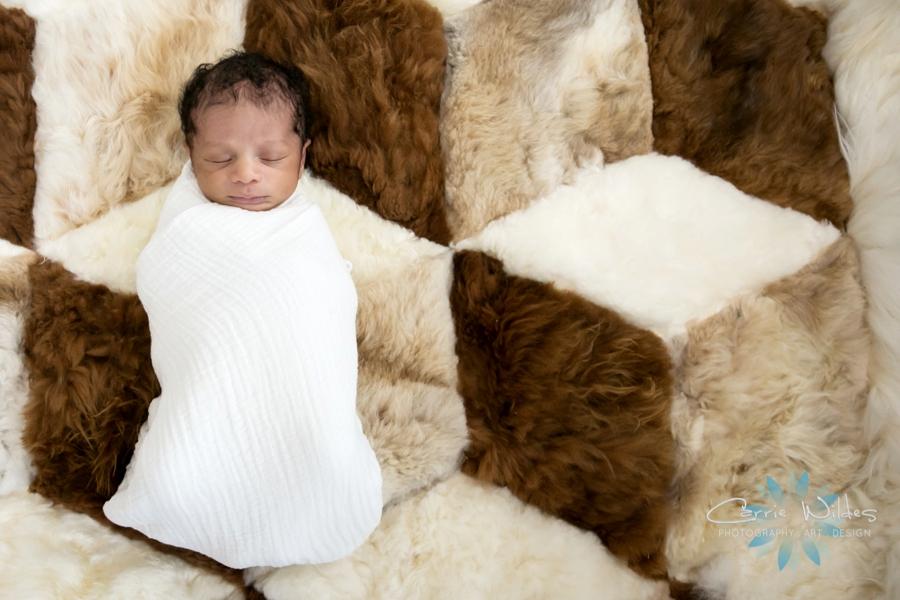 3_11_16 Tampa Newborn Portraits_0001.jpg
