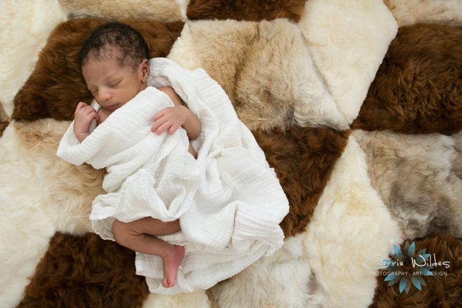 3_11_16 Tampa Newborn Portraits_0008.jpg