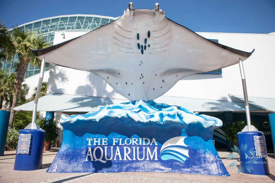 Image result for florida aquarium