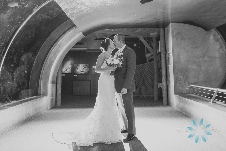 7_15_16 Florida Aquarium Wedding_0020.jpg