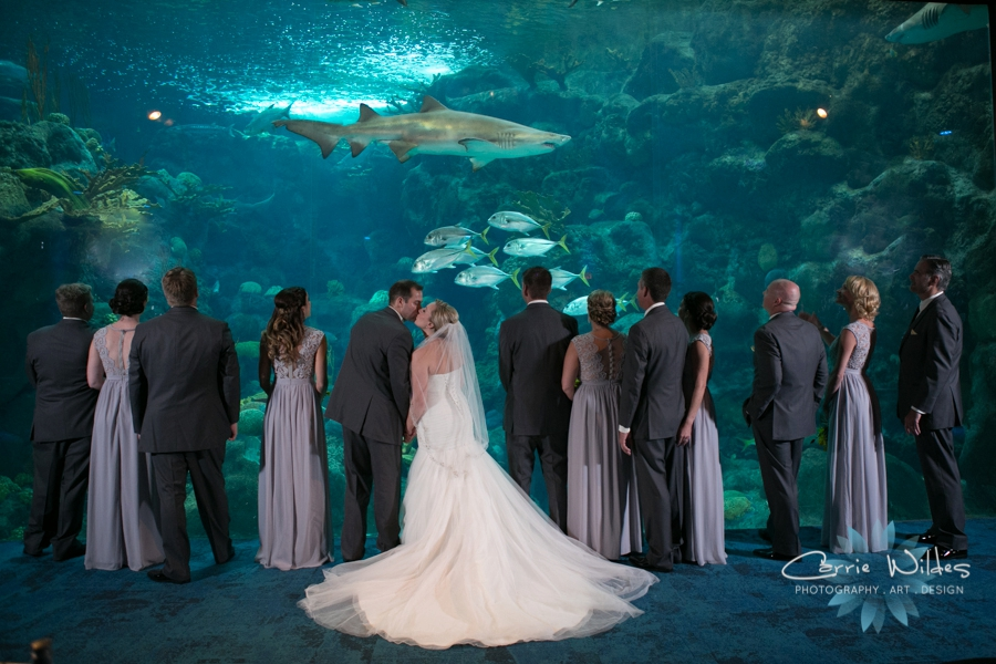 8_19_16 Florida Aquarium Wedding_0021.jpg