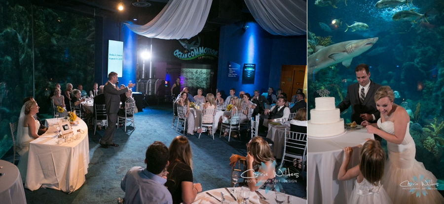 8_19_16 Florida Aquarium Wedding_0037.jpg