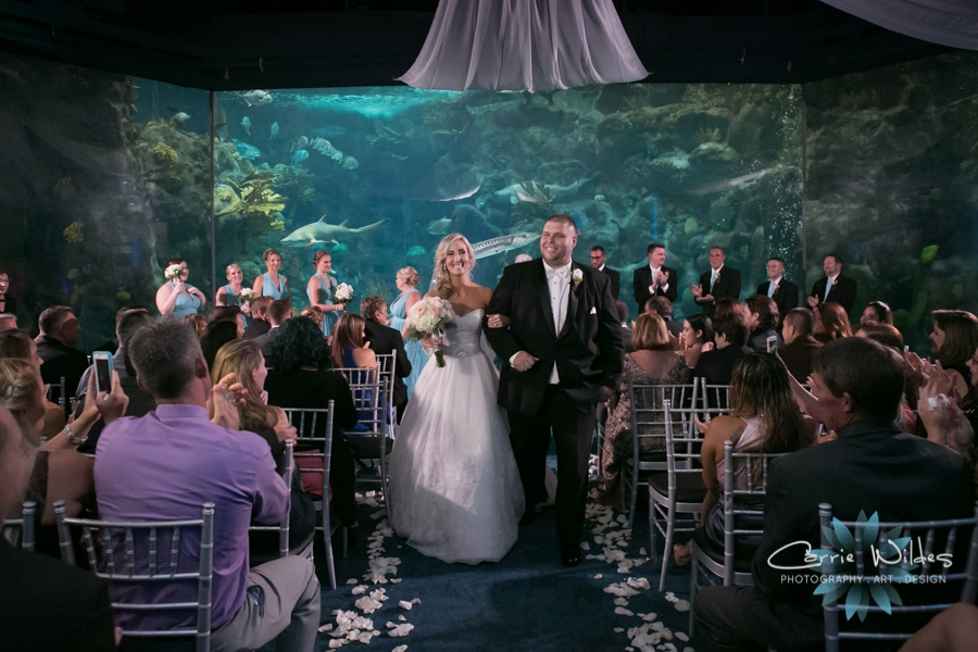 9_17_16 Alecia and Donald Florida Aquarium Wedding_0025.jpg
