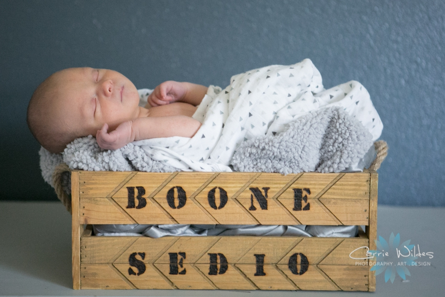 4_6_17 Boone Tampa Newborn Session_0003.jpg