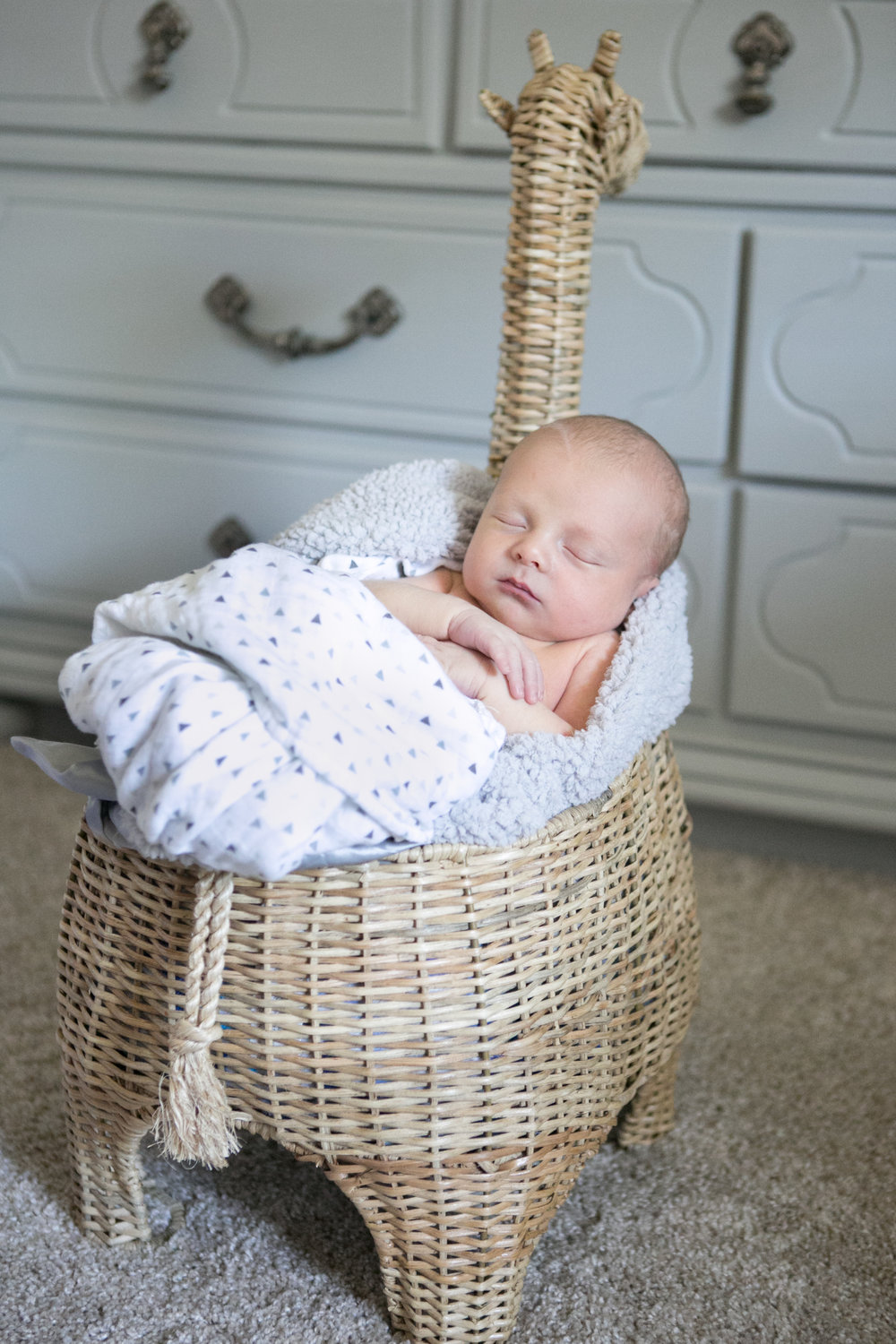 4_6_17 Boone Tampa Newborn Session 01.jpg