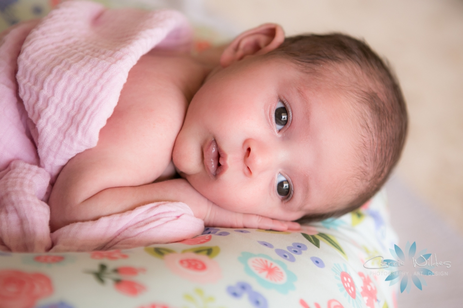 5_31_17 Laila Tampa Newborn Portraits_0015.jpg