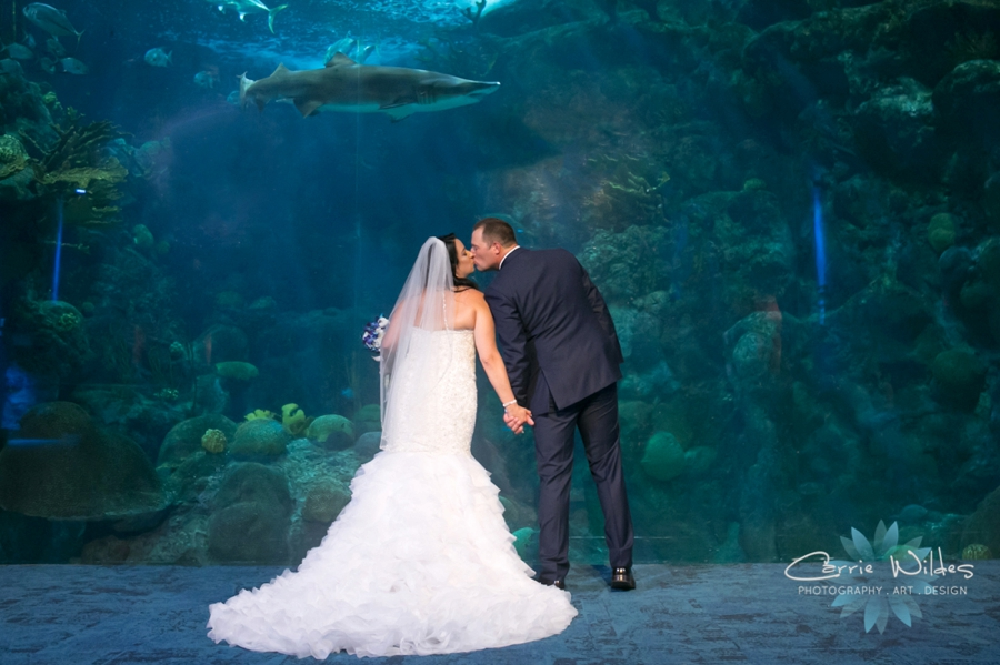 10_20_18 Donna and Drew The Florida Aquarium Wedding_0027.jpg