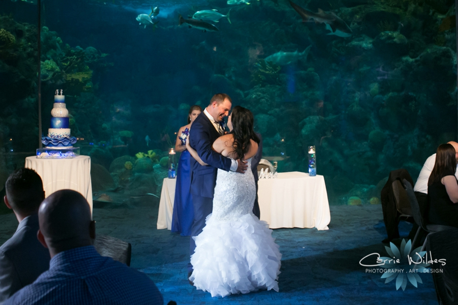 10_20_18 Donna and Drew The Florida Aquarium Wedding_0034.jpg