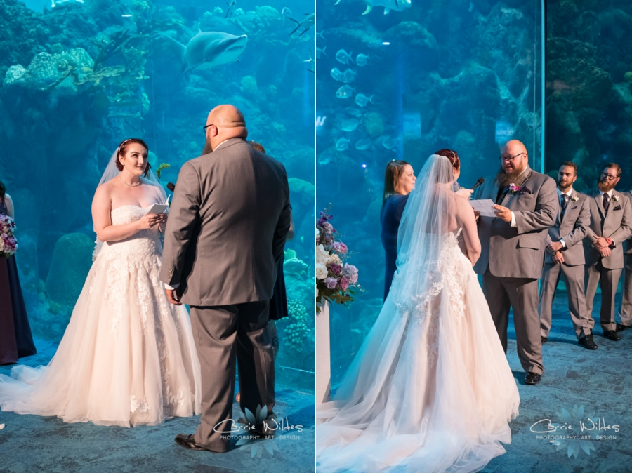 10_21_18 Emily and Bryan Florida Aquarium Wedding_0006.jpg