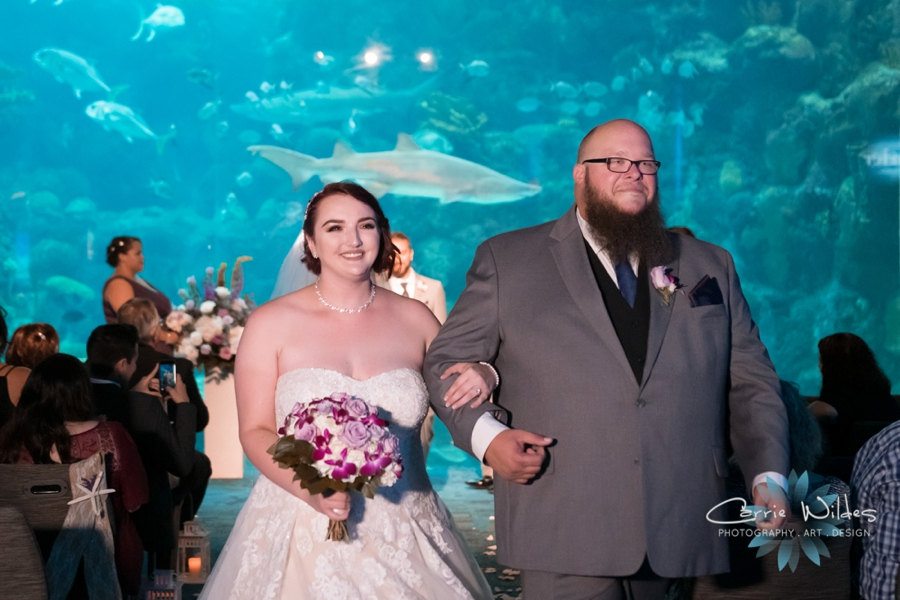 10_21_18 Emily and Bryan Florida Aquarium Wedding_0008.jpg
