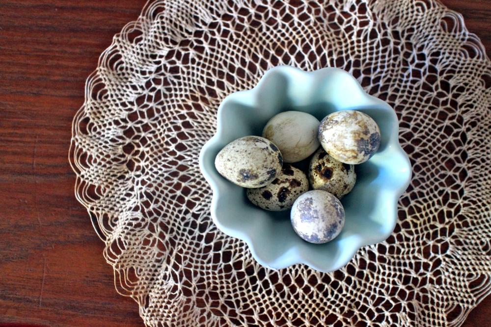 Pretty quail eggs.
