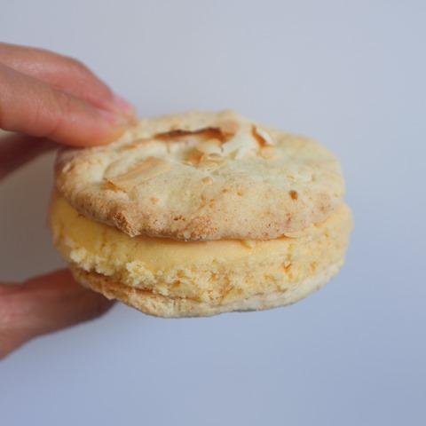 Mango + Pawpaw sorbet with Coconut cookie