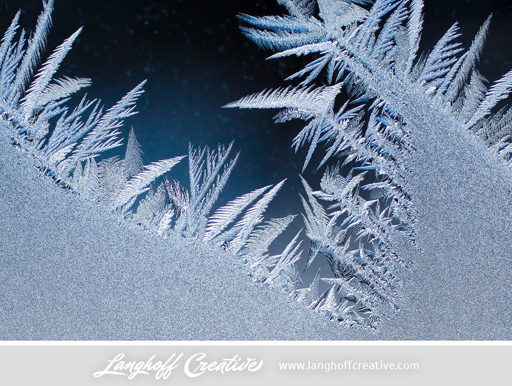 LanghoffCreative-frost-macro-photography_Jan06-2014-photo-6.jpg