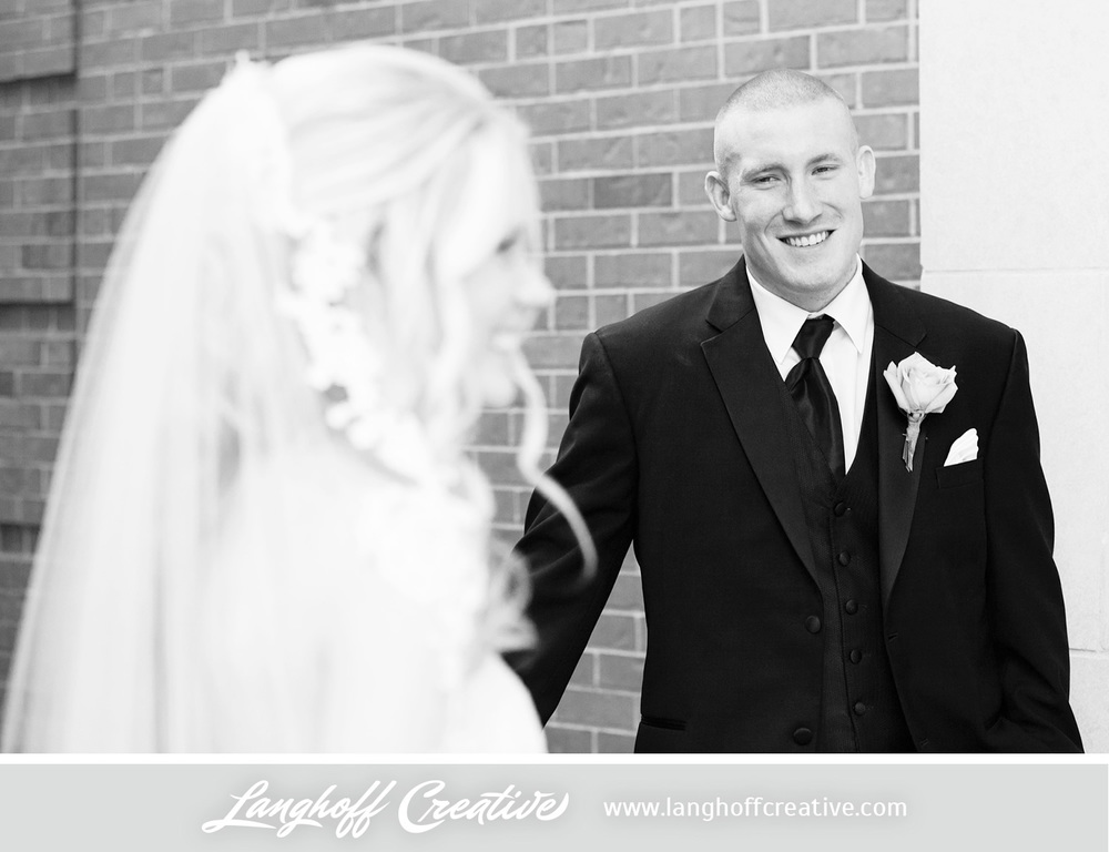 IllinoisWeddingPhotography-Elmhurst-LanghoffCreative-18-photo.jpg