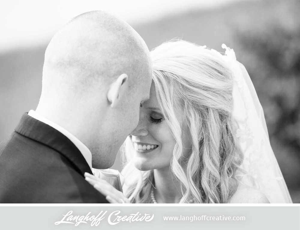 IllinoisWeddingPhotography-Elmhurst-LanghoffCreative-20-photo.jpg