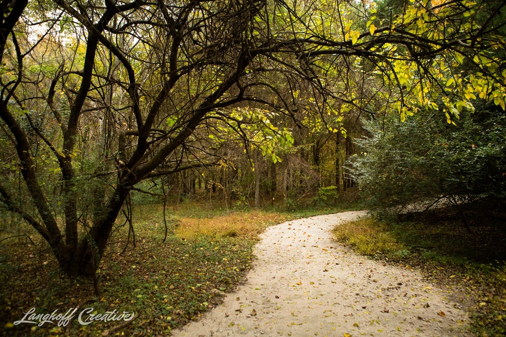 FallColors-NatureWalk-NorthCarolina-HistoricOakViewCountyPark-LanghoffCreative-20141113-2-photo.jpg