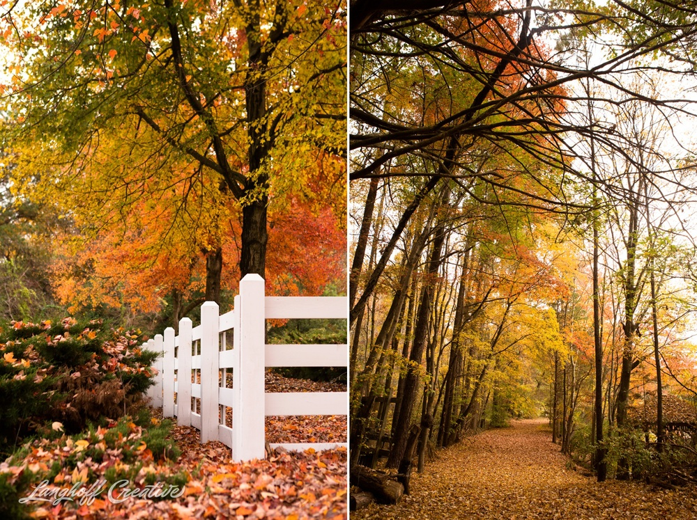 FallColors-NatureWalk-NorthCarolina-HistoricOakViewCountyPark-LanghoffCreative-20141113-3-photo.jpg