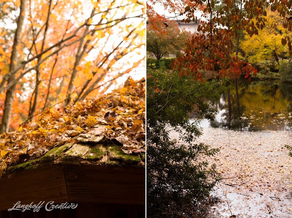 FallColors-NatureWalk-NorthCarolina-HistoricOakViewCountyPark-LanghoffCreative-20141113-5-photo.jpg
