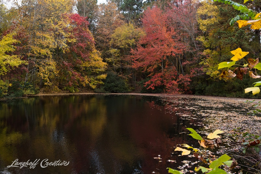 FallColors-NatureWalk-NorthCarolina-HistoricOakViewCountyPark-LanghoffCreative-20141113-7-photo.jpg