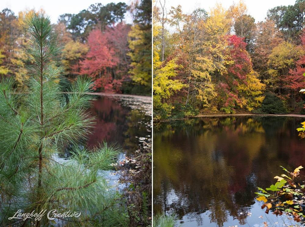 FallColors-NatureWalk-NorthCarolina-HistoricOakViewCountyPark-LanghoffCreative-20141113-9-photo.jpg