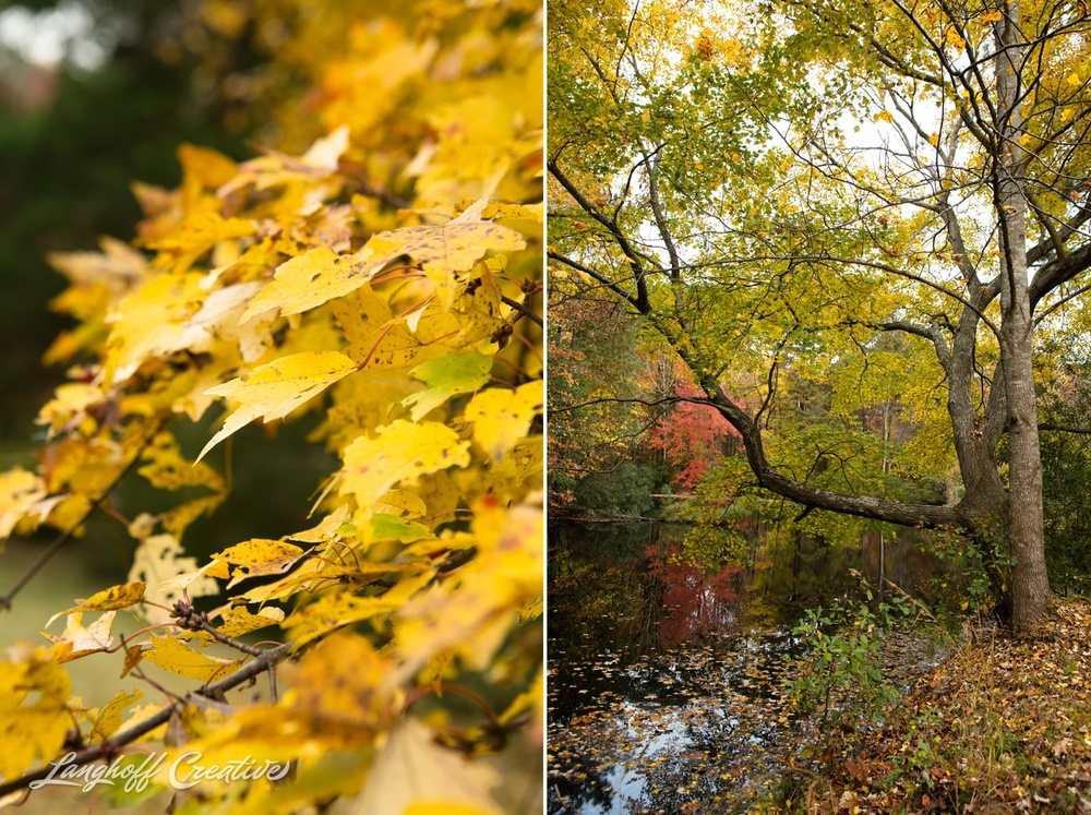 FallColors-NatureWalk-NorthCarolina-HistoricOakViewCountyPark-LanghoffCreative-20141113-10-photo.jpg