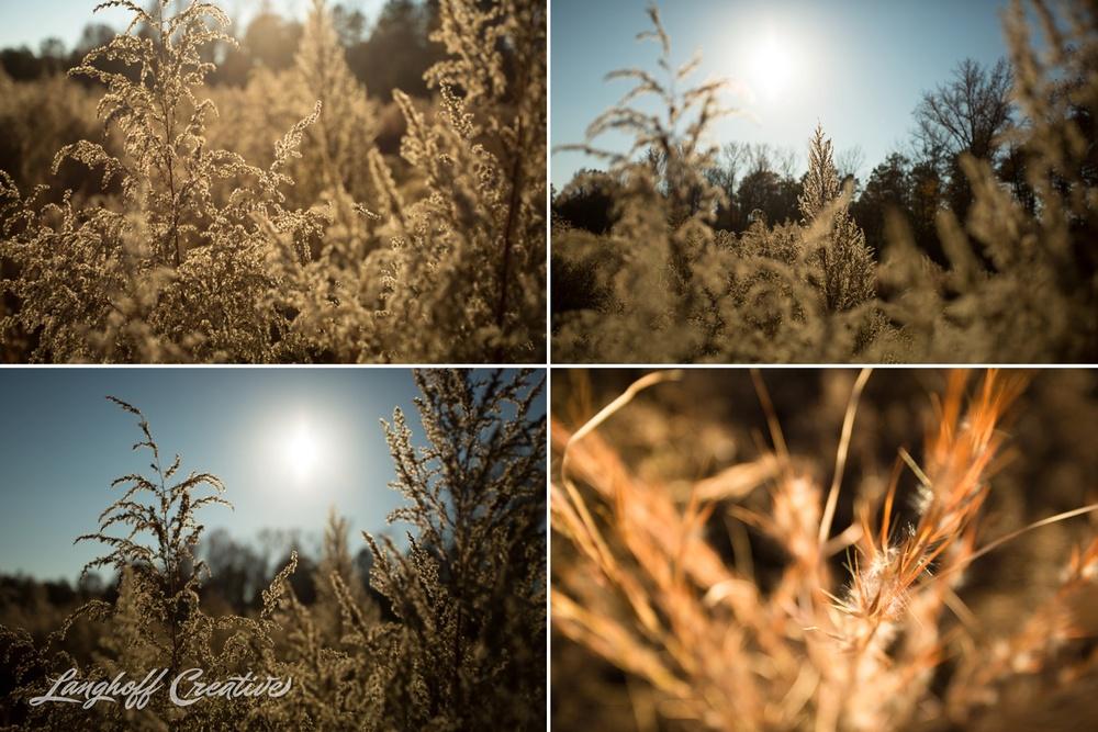 BrightSideYouthRanch-NatureWalk-SouthCarolina-HorseRanchProperty-LanghoffCreative-20141115-8-photo.jpg