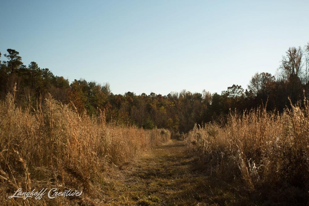 BrightSideYouthRanch-NatureWalk-SouthCarolina-HorseRanchProperty-LanghoffCreative-20141115-9-photo.jpg