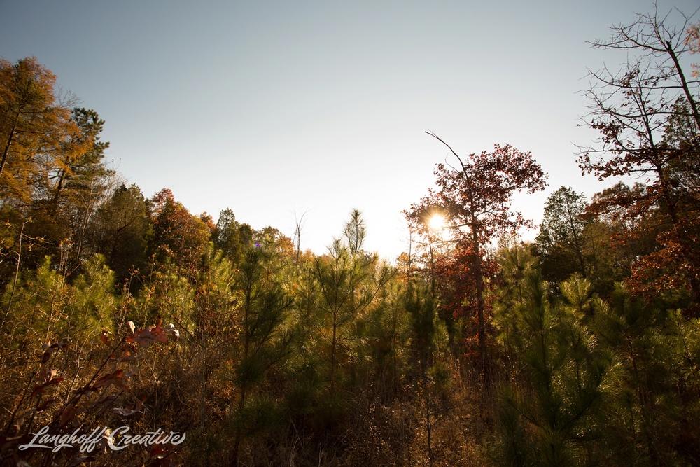 BrightSideYouthRanch-NatureWalk-SouthCarolina-HorseRanchProperty-LanghoffCreative-20141115-15-photo.jpg