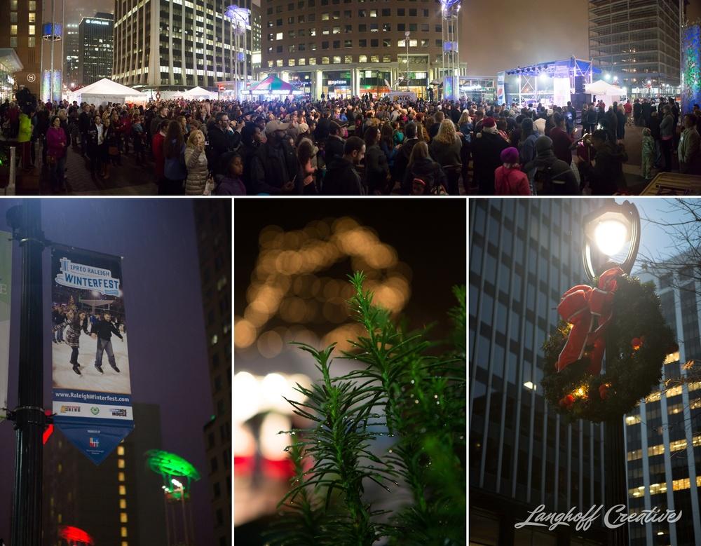 RaleighWinterfest-2014-DowntownRaleigh-Christmas-LanghoffCreative-1-photo.jpg