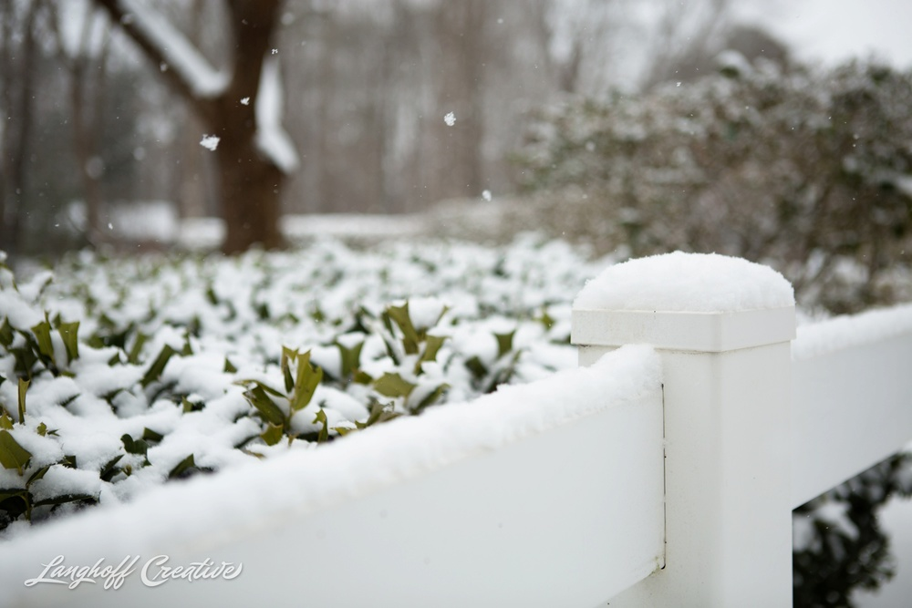 RaleighSnow-Winter-2015-RaleighPhotographer-LanghoffCreative-Snowday-AmberLanghoff-3-photo.jpg