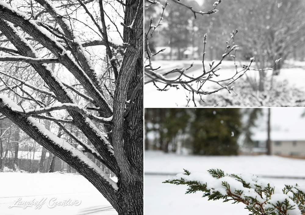RaleighSnow-Winter-2015-RaleighPhotographer-LanghoffCreative-Snowday-AmberLanghoff-7-photo.jpg