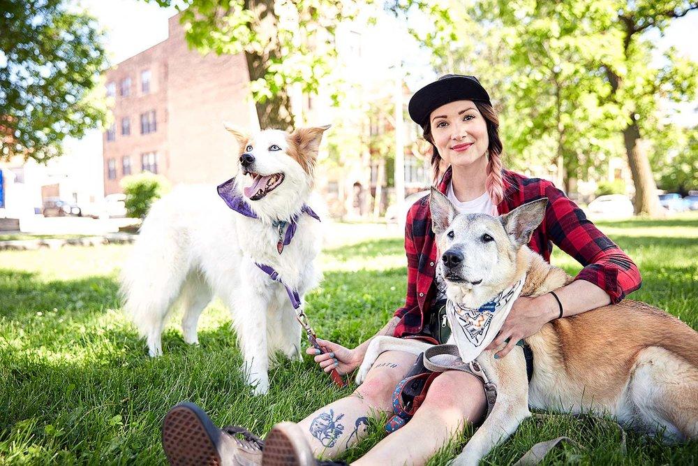 dog photographer chicago