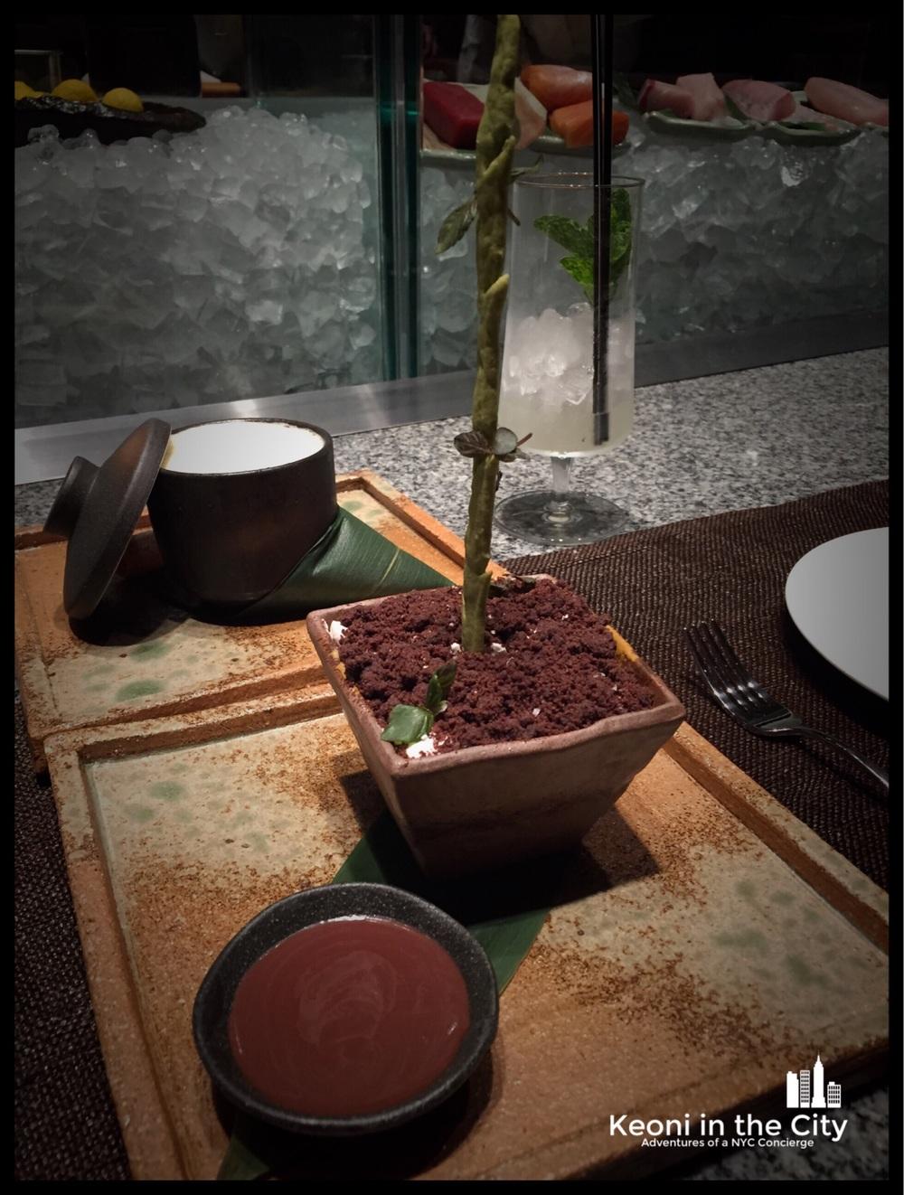 Zuma bamboo dessert