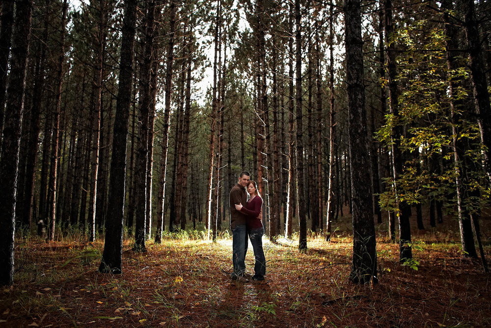 northern mn forest engagement session