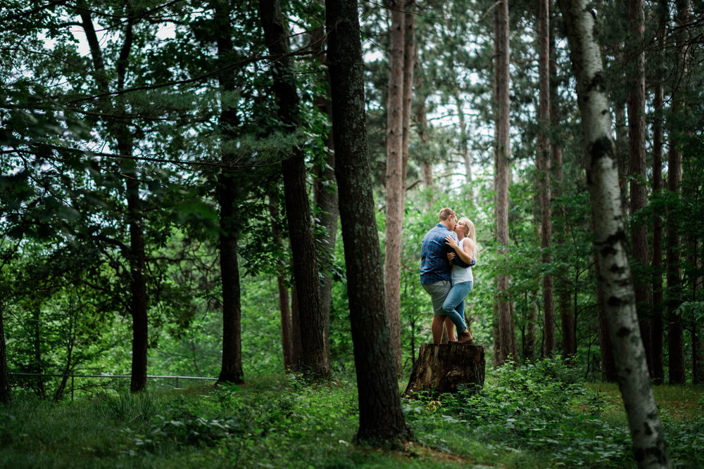 mn destination engagement session in the north woods