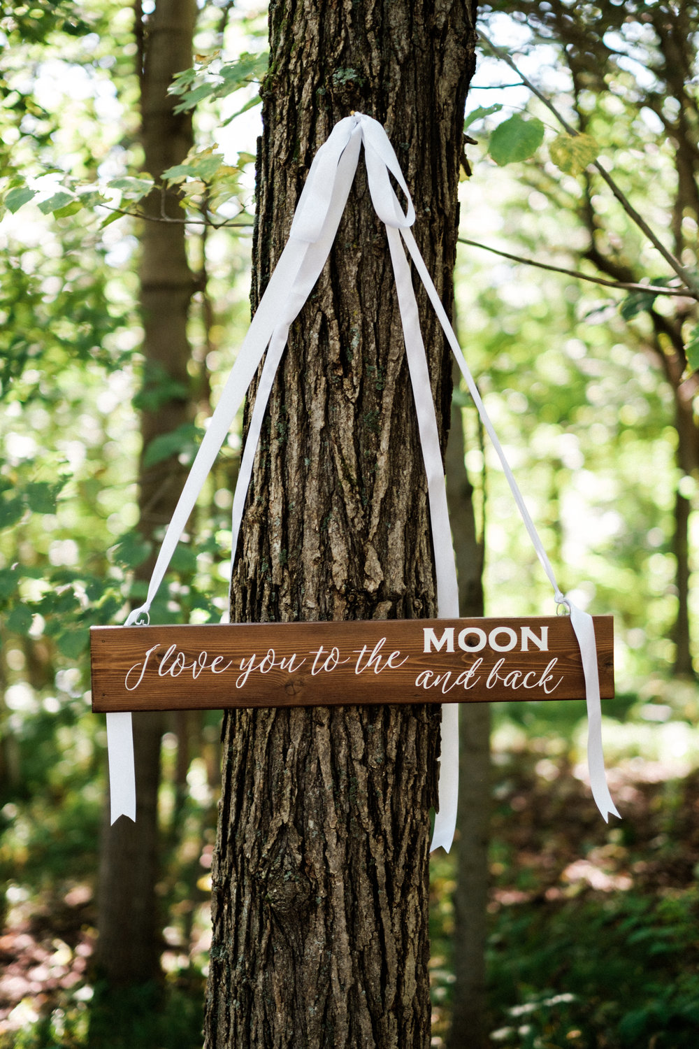 rustic wedding direction sign lakeside minnesota wedding