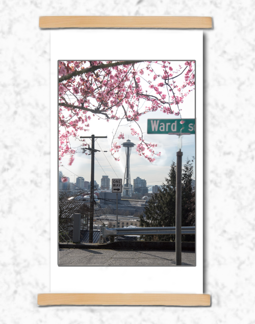 Cherry Blossoms with Space Needle by Kayako Sareen
