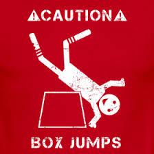 boxjumps.jpg